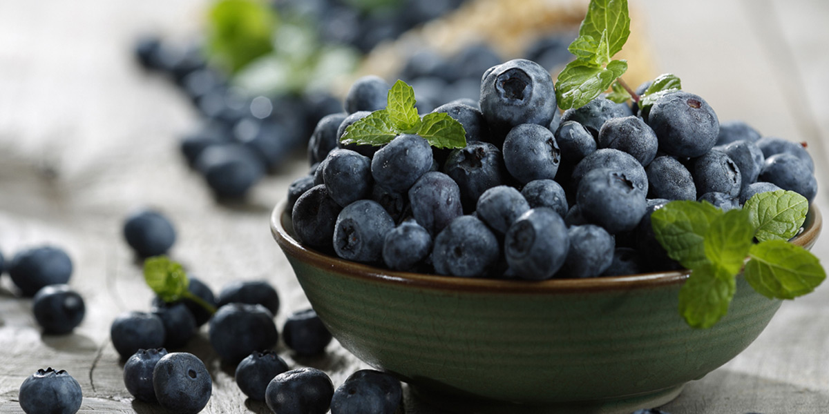 VL_VL_ALL_1200x600_1907_Facts_Antioxidants_Blue_Berries.jpg